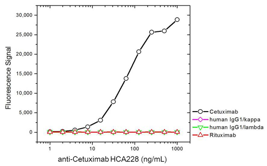 Specificity of anti-cetuximab antibody HCA228