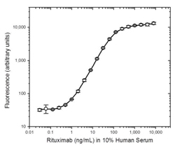 PK assay, bridging format, using rituximab antibody