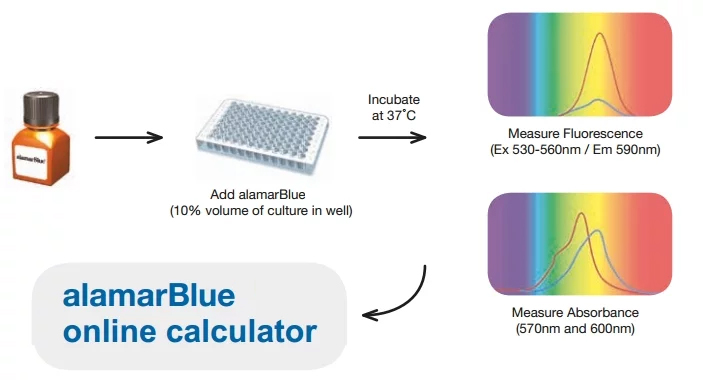 how to use alamarblue cell proliferation assay