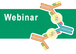 How to overcome assay challenges using custom recombinant antibodies December 9th 2014 - Register Now