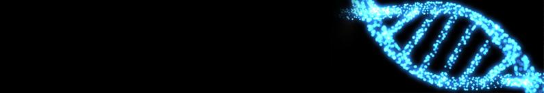 BrdU (bromodeoxyuridine)