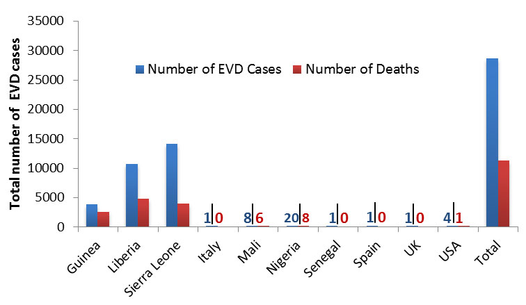 Total number of Ebola cases and deaths wordwide as of November 1, 2015