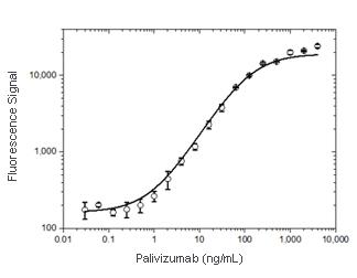 Anti-palivizumab antibody pair in PK bridging ELISA