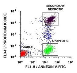 Annexin V:FITC Assay Kit
