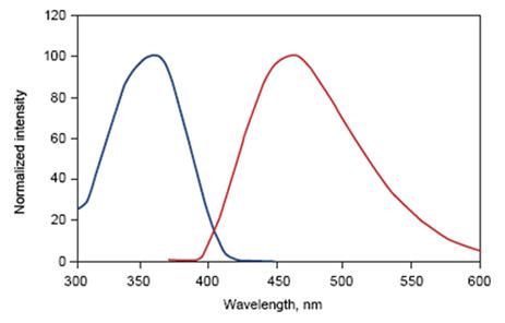 Fig. 2. DAPI excitation and emission spectra. Maximal excitation at 359nm (blue) and maximal emission at 461nm (red)