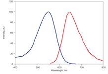 Excitation and Emission Spectra of 7-AAD