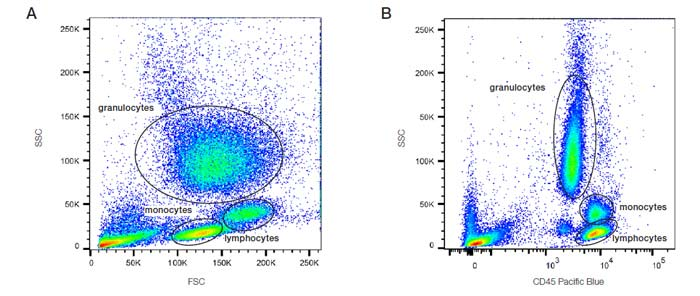 Fig. 13. Analysis of lysed whole blood. A. SSC vs. FSC density plot: B. SSC vs. CD45 PB fluorescence plot. PB, Pacific Blue; FSC, forward scatter; SSC, side scatter.