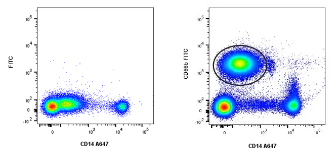Fig 30 Cell population resolution.