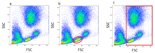 Figure 1. Red cell lysed whole blood. (a) SSC vs FCS density plot. Each dot or point on the plot represents an individual particle that has passed through the laser. (b) A gate has been applied to identify a specific population, in this case lymphocytes or to remove debris (c)
