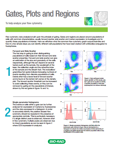 Gating Strategies for Effective Flow Cytometry Data Analysis | Bio-Rad
