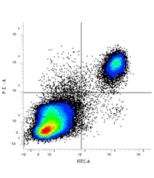 RPE conjugated mouse anti mouse CD14 (MCA2745PE) and FITC conjugated rat anti mouse F4/80 (MCA497F). All experiments performed on murine peritoneal macrophages in the presence of murine SeroBlock (BUF041A).