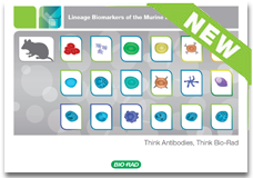 Lineage biomarkers of murine immune system booklet – get your free copy today
