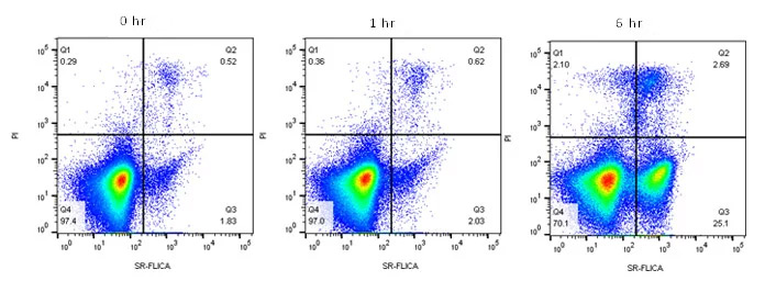 Fig. 4. Active caspase-9 staining to measure apoptosis by flow cytometry.