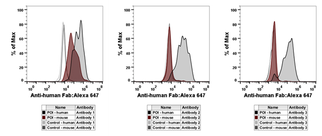 Fig. 4. Flow cytometry characterization of purified antibodies.
