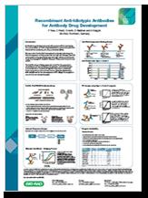 Recombinant anti-idiotypic antibodies for antibody drug development