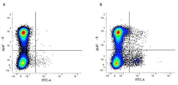 Fig. 1. Flow cytometry analysis of Mouse Integrin Markers CD11b and CD11c.