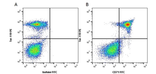 Fig. 2. Flow cytometry analysis of mouse tron transport markers CD71 and TER-119.