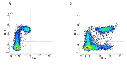 Fig.2. Flow cytometry analysis of Human HLA Marker HLA DP DQ DR.