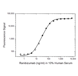 Fig. 2. Ranibizumab PK antigen capture ELISA using antibody HCA307.