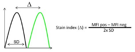 Fig. 1. Calculation of the stain index.
