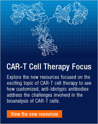 CAR-T Cell Therapy Focus
