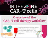 Overview of the CAR-T cell therapy workflow, plus technologies and reagents used for bioanalysis