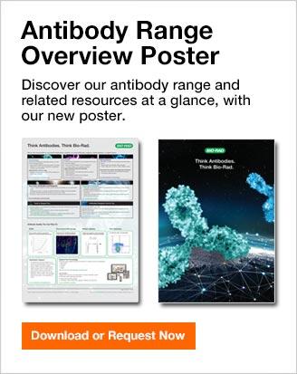 Antibody Range Overview Poster