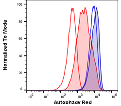 Fig. 1. Autophagy induction in Jurkats measured with different amounts of Autophagy Probe Red (APO010).