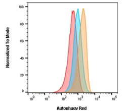 Fig. 2. Autophagy induction in Jurkats measured with Autophagy Probe Red (APO010)