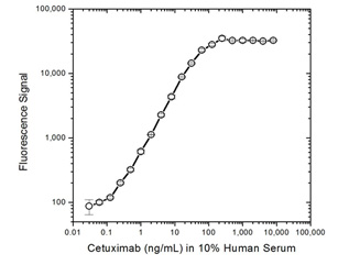 Fig. 2. Cetuximab PK bridging ELISA using antibodies HCA220 and HCA228P