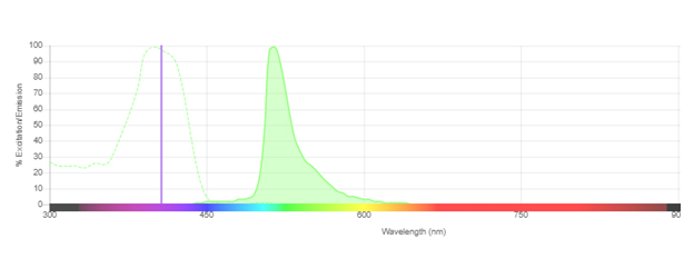 Fig. 1. Excitation and emission spectra for SBV515.