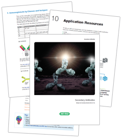 Download or request a free printed copy of our new secondary antibody guide