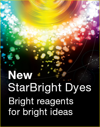 New StarBright Dyes