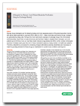 A Blueprint for Robust, Cost-Efficient Biosimilar Purification Using Ion Exchange Resins