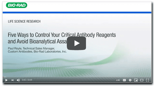 Five Ways to Control Your Critical Antibody Reagents and Avoid Bioanalytical Assay Failure