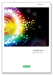 Starbright Dyes - Bright Reagents for Bright Ideas