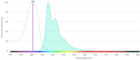 Fig. 1. Excitation and emission spectra for SBV475