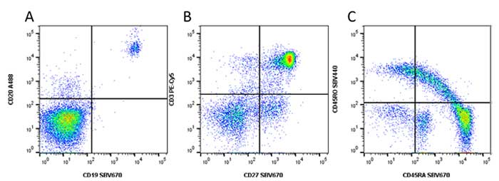 Fig. 5. Examples of SBV670 Dye staining