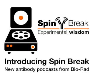 Introducing Spin Break from Bio-Rad