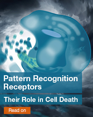 Pattern Recognition Receptors- Their Role in Cell Death