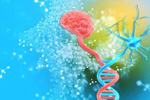 Big Dreams: Multidisciplinary Science — Not a Fairytale