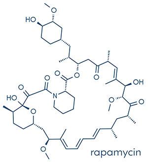 Structure of rapamycin