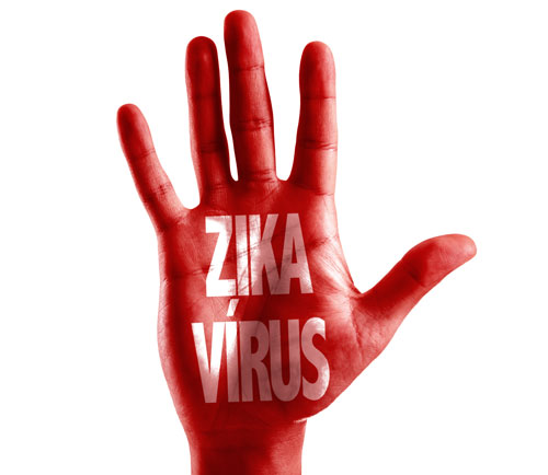 The rise in Zika virus research — an update