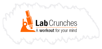 Lab crunches
