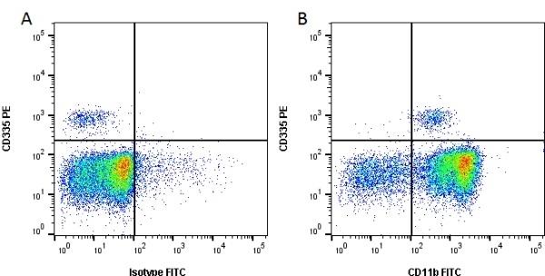 CD11b Antibody | CC126 gallery image 1