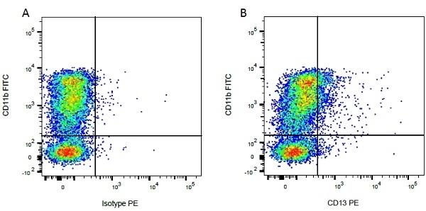 CD13 Antibody | CC81 gallery image 2
