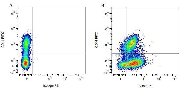 CD14 Antibody | CC-G33 gallery image 3