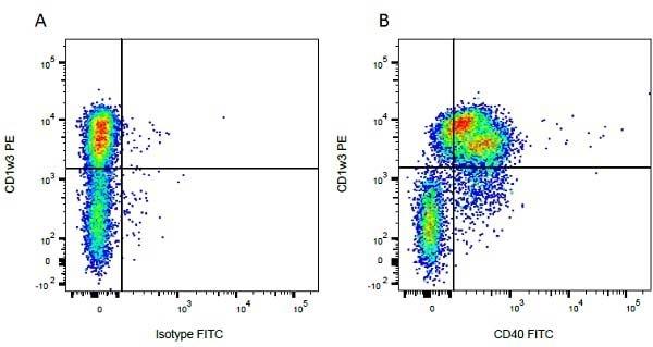 CD1w3 Antibody | CC43 gallery image 1