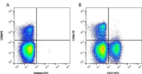 CD21 Antibody | CC21 gallery image 1
