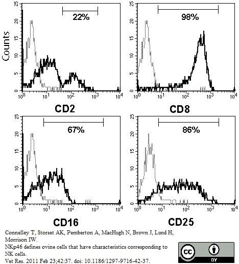 CD25 Antibody | IL-A111 gallery image 1